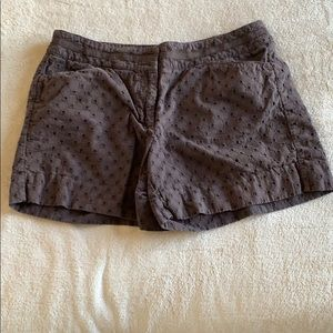 Brown design shorts from White House Black Market